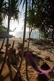 海滩吊床密林偏僻的热带 库存照片