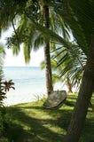 海滩吊床掌上型计算机菲律宾结构树 库存图片