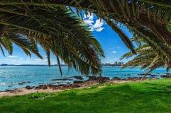 海滩和热带海滩 免版税库存照片