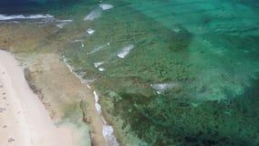 海滩和礁石费埃特文图拉岛鸟瞰图  影视素材