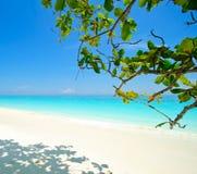 海滩和蓝色海运在泰国 库存图片