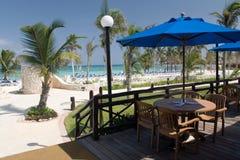 海滩咖啡馆墨西哥 免版税图库摄影