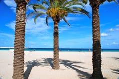 海滩品柱lo圣・西西里岛维托 免版税图库摄影