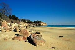 海滩唱歌 免版税库存图片