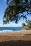 海滩在卡帕拉奥阿 免版税库存照片