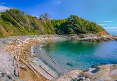 海滩在维多利亚 库存图片
