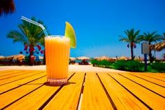 海滩在鲜美对面的汁液瓜 库存照片