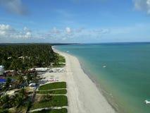 海滩在Maragogi,从空气的巴西 免版税库存图片