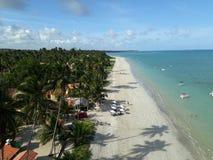 海滩在Maragogi,从空气的巴西 免版税库存照片