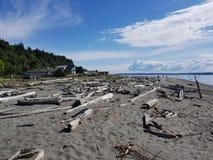 海滩在Maxwelton 库存图片