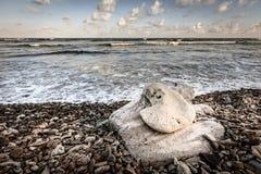 海滩场面在英属维尔京群岛 免版税库存照片