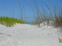 海滩场面 图库摄影
