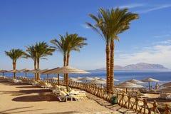 海滩埃及人 库存照片