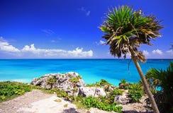 海滩墨西哥tulum 库存照片