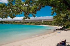 海滩夏威夷人 免版税图库摄影