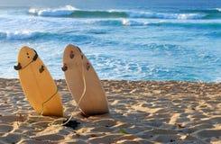 海滩夏威夷人 库存照片