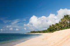 海滩夏威夷北部奥阿胡岛岸 免版税库存照片