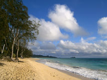 海滩夏威夷奥阿胡岛waimanalo 免版税库存照片