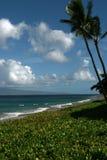 海滩夏威夷平安的场面 库存图片