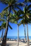 海滩夏威夷檀香山奥阿胡岛waikiki 免版税库存照片