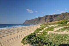 海滩夏威夷考艾岛polihale 库存照片