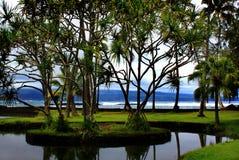 海滩夏威夷hilo公园richardson 免版税库存照片