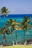 海滩夏威夷kona 免版税图库摄影