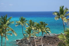 海滩夏威夷kona 免版税库存图片