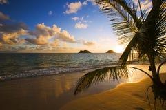 海滩夏威夷lanikai日出 免版税图库摄影