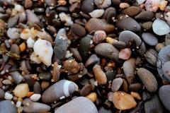 海滩多彩多姿的小卵石 免版税库存图片