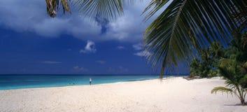 海滩多米尼加共和国的海岛共和国saona 图库摄影