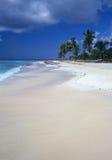 海滩多米尼加共和国的海岛共和国saona 库存照片