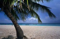 海滩多米尼加共和国的海岛掌上型计&# 免版税库存照片