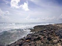海滩大鳄鱼珊瑚岛海浪 库存照片