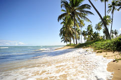 海滩天堂 免版税库存图片