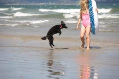 海滩女孩长卷毛狗 库存照片