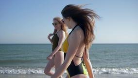 海滩季节,泳装的快乐的朋友女孩享受在沿海和头发飞行的周末 股票视频