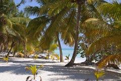 海滩富饶海岛 免版税库存照片