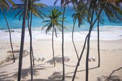 海滩富饶 免版税库存图片