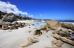海滩对城镇视图的海角clifton 库存图片