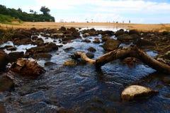 海滩小河 库存照片