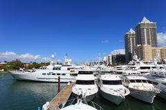 海滩小船迈阿密显示 免版税库存图片