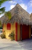 海滩岩礁椰树小屋 库存图片