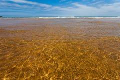 海滩岸与海运的 免版税库存图片