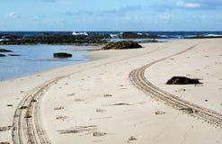 海滩巡逻 图库摄影
