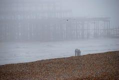 海滩布赖顿有薄雾的码头 免版税图库摄影