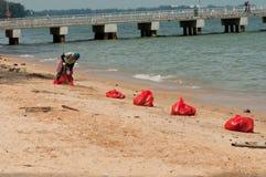 海滩干净的海岸东部新加坡 免版税库存图片