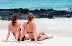 海滩开会 库存图片