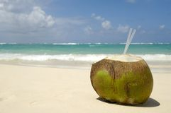 海滩异乎寻常椰子的饮料 免版税库存图片