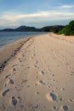 海滩很好被践踏的busuanga coron 免版税图库摄影